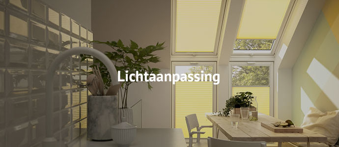lichtaanpassing-desktop